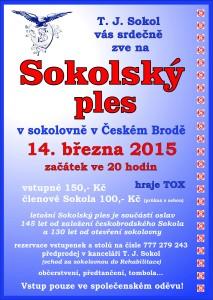 Sokolský ples 2015