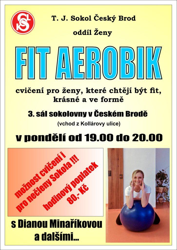Fit aerobik